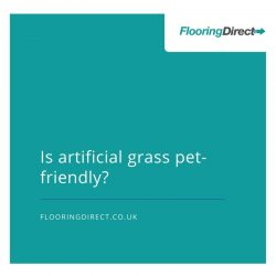 Pet-friendly artificial grass thumbnail