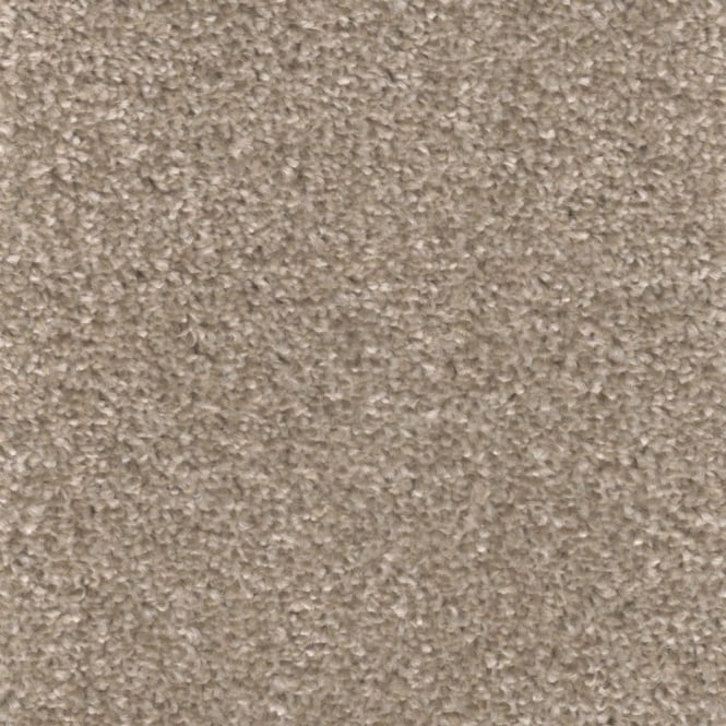 Noble collection carpet buy cheap budget carpet online for How to buy carpeting