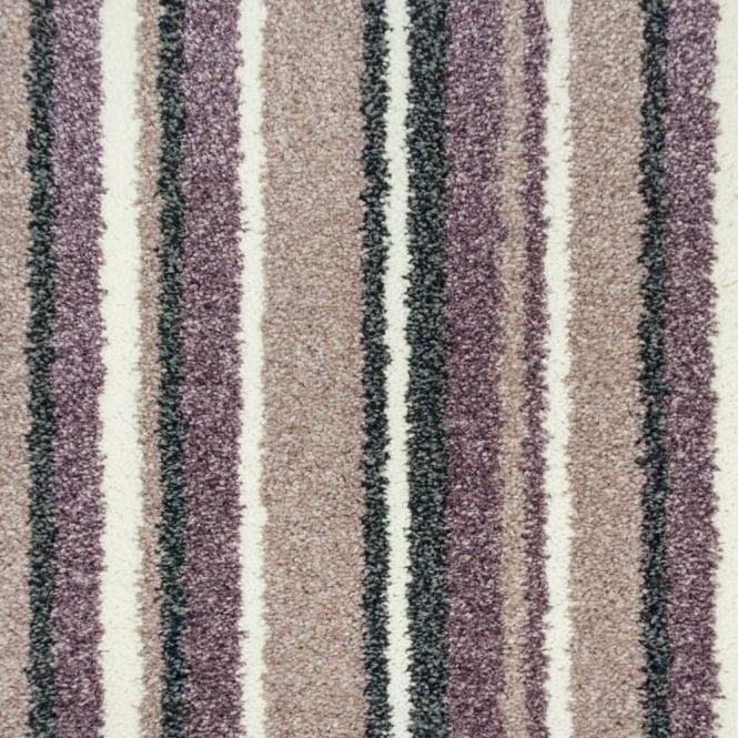Noble Collection Carpet Buy Cheap Budget Carpet Online