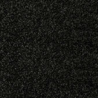 Noble Heathers Pirate Black Carpet