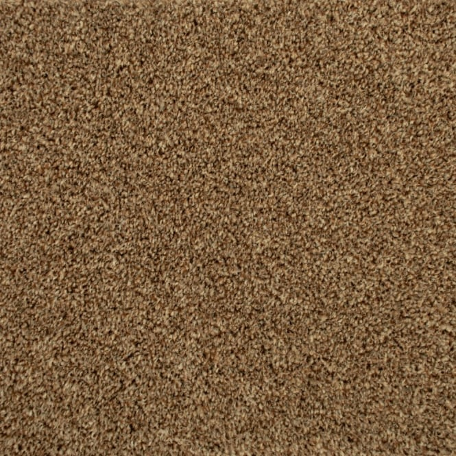 Balta Noble Heathers Seal Brown Carpet - Balta from ...