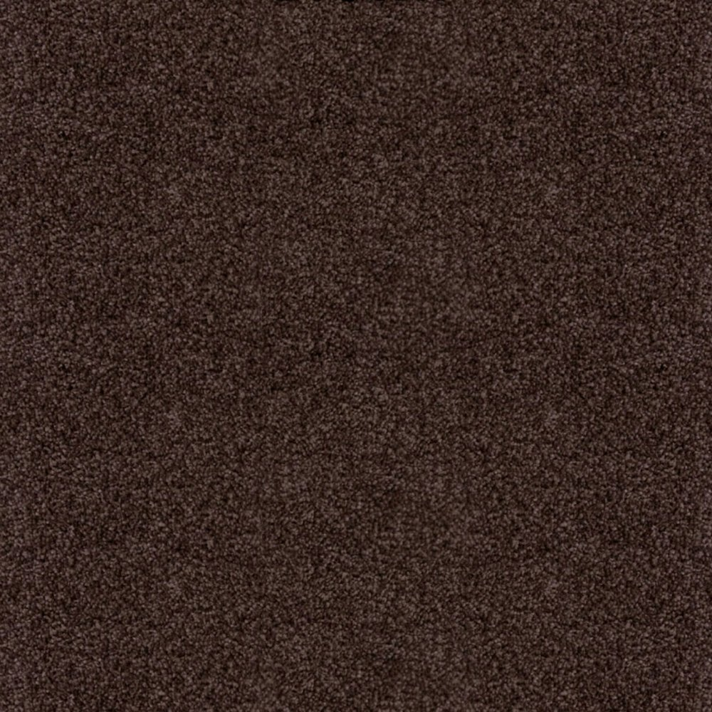 Balta Splendid Saxony Dark Brown Carpet Carpets From Interiors Inside Ideas Interiors design about Everything [magnanprojects.com]