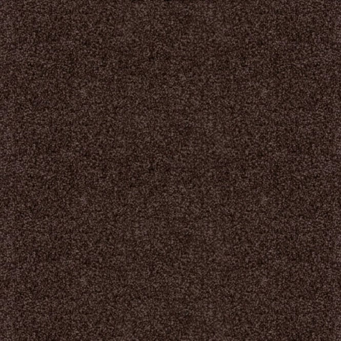 Splendid Saxony Dark Brown Carpet