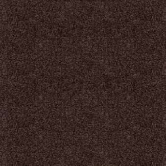 Splendid Saxony Dark Brown Carpet