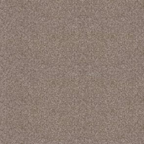 Splendid Saxony Light Brown Carpet