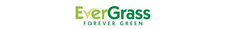 Latex Backing Evergrass Artificial Grass