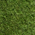 Evergrass™ Ascot 30mm Artificial Grass