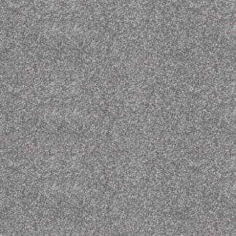 Splendid Saxony Silver Grey Carpet